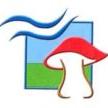 Associació Micològica de Tarragona